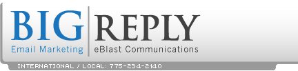 BigReply home page Logo